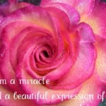 Joy, Passion & Purpose