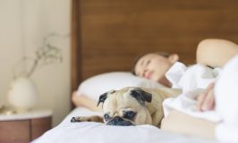 Get a Great Night's Sleep with a Bedtime Routine