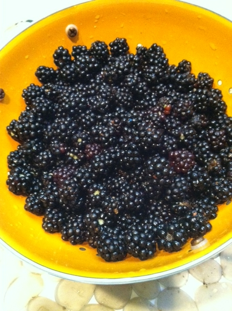 Choose Happy Bowl of Blackberries