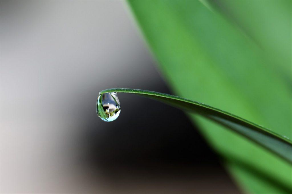 rain drop hypnotherapy
